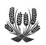 Parma Day Harvest Festival 5k registration logo