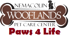 Paws4Life registration logo