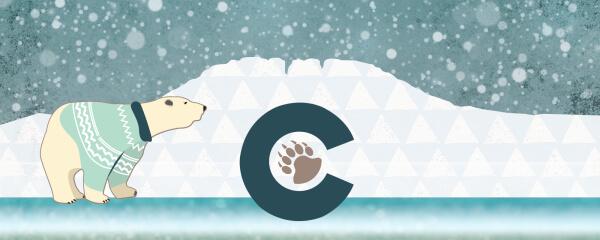 Polar 5k & Polar Bear Plunge registration logo