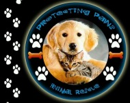 2014-protecting-paws-howl-o-ween-5k-registration-page