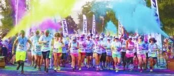 Race for a Safer Cure registration logo