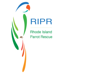 RI Parrot Rescue's First 5k registration logo