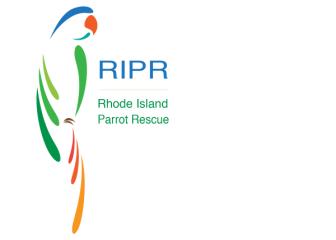 RI Parrot Rescue's First 5k registration logo