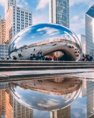 Run Chicago 2020 Virtual Race - Fall registration logo