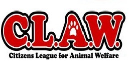 Run for the Paws registration logo