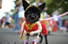 2015-running-to-rescue-registration-page