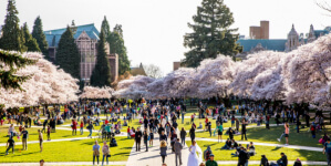 Seattle Cherry Blossom Run registration logo