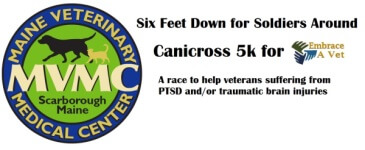 Six Legs Down for Soldiers Around 5k Canicross registration logo
