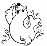 2019-soggy-seals-sprint-triathlon-registration-page