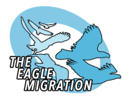 The Eagle Migration registration logo
