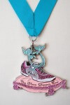 2017-the-glass-slipper-virtual-race-registration-page