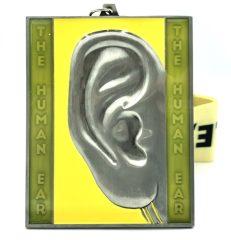 2020-the-human-ear-1m-5k-10k-131-262-registration-page