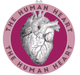 The Human Heart 1 Mile, 5K, 10K, 13.1, 26.2 registration logo