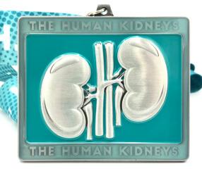 The Human Kidneys 1M 5K 10K 13.1 26.2 registration logo