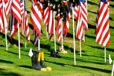 2017-the-patriot-run-registration-page