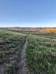 Trail Mix Run Wyoming registration logo