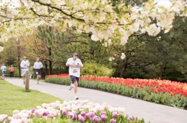 2021-tulip-5k-registration-page