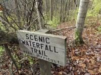 Waterfall 5K / 10K Trail Runs registration logo