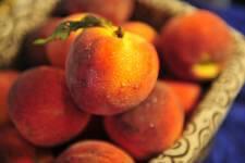 Where's The Fruit registration logo