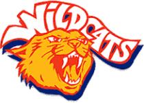 Wildcat Color Run registration logo