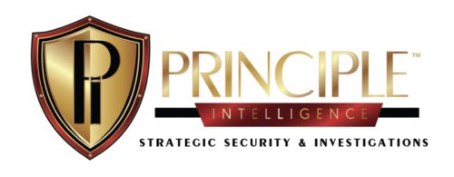 Principle Intelligence  logo