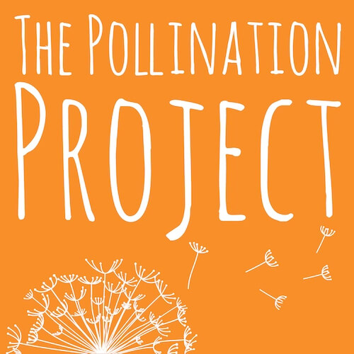 The Pollination Project logo