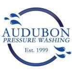 Audubon Pressure Washing  logo