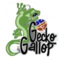 17 Geckos, Inc. logo