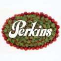 Perkins Matamoras PA logo