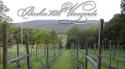 Bashakill Vineyards logo