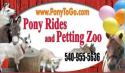 Pony 2 Go logo
