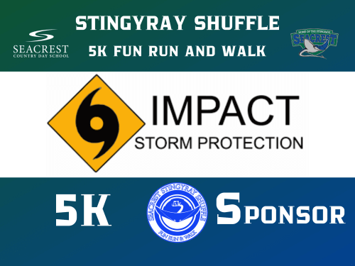 Impact Storm Protection  logo