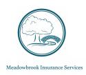 Meadowbrook Insurance - Christian Huth logo