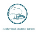 Meadowbrook Insurance - Christian Huth logo