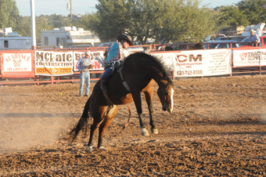 images.rodeoticket.com/infopages/benson-butterfield-rodeo-infopages-12465.png