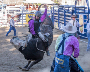images.rodeoticket.com/infopages1/gold-country-pro-rodeo-infopages1-12466.png