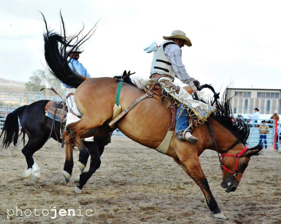 images.rodeoticket.com/infopages1/overland-stage-stampede-rodeo-infopages1-12495.png