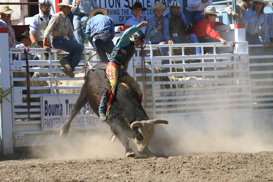 images.rodeoticket.com/infopages2/choteau-american-legion-independence-day-rodeo-infopages2-12581.png