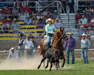 images.rodeoticket.com/infopages2/lazy-v-105-infopages2-12474.png