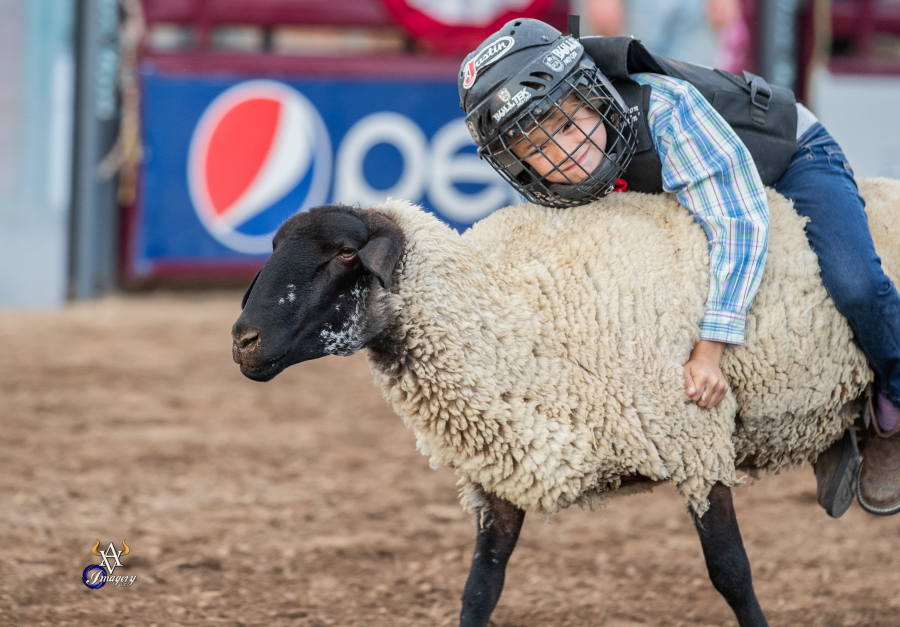 images.rodeoticket.com/infopages3/alamosa-round-up-infopages3-12578.png