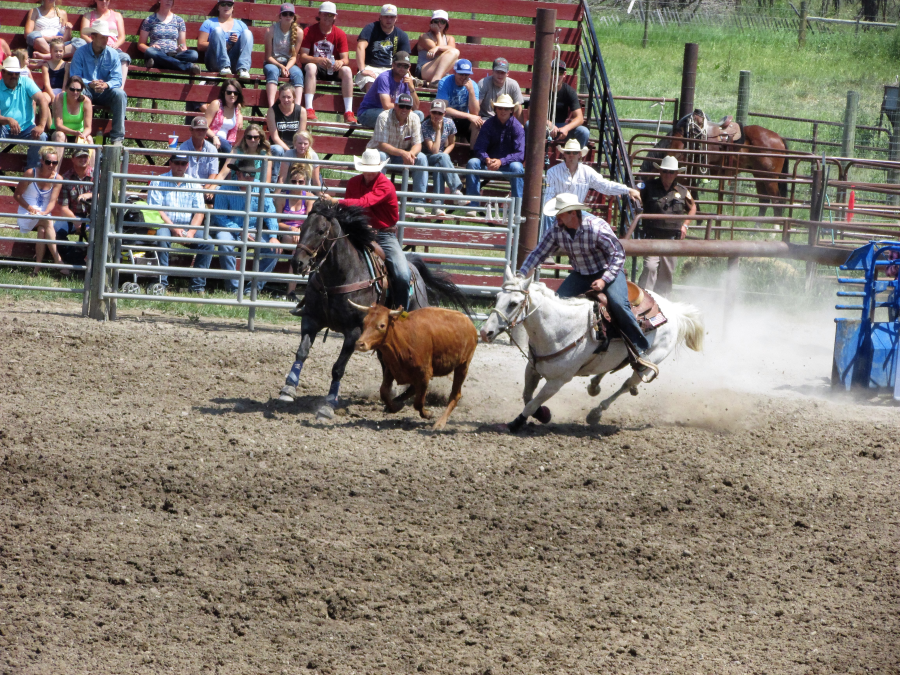 images.rodeoticket.com/infopages3/choteau-american-legion-independence-day-rodeo-infopages3-12581.png