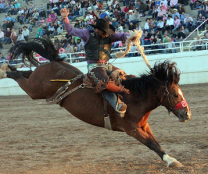 images.rodeoticket.com/infopages3/guymon-pioneer-days-rodeo-infopages3-12468.png