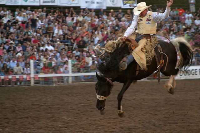 images.rodeoticket.com/infopages3/strawberry-days-rodeo-infopages3-12472.png