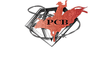 Professional Championship Bull Riders- Walworth registration logo