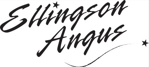 Ellingson Angus logo