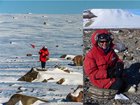 Antarctic meteorites 320