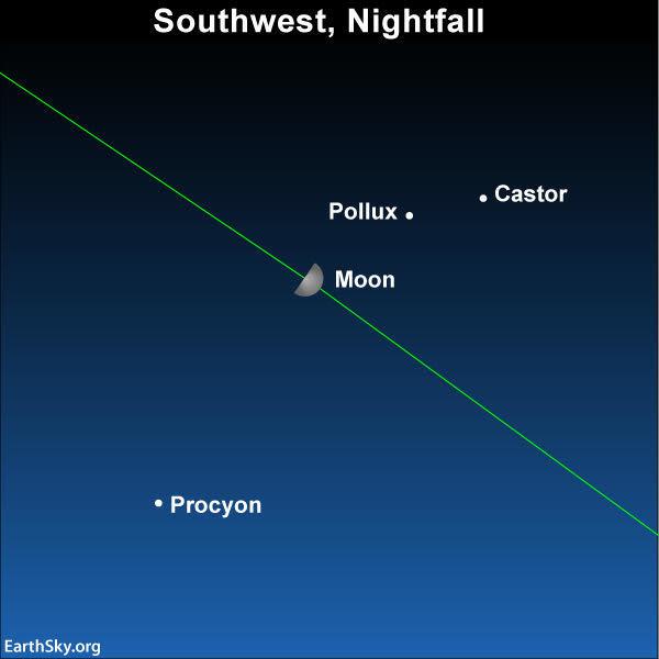 2019 april 12 moon castor pollux and procyon
