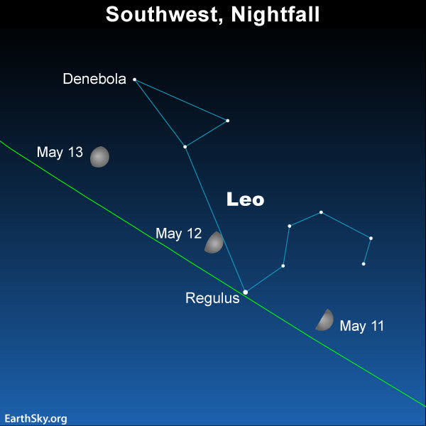 2019 may11 12 13 moon and regulus