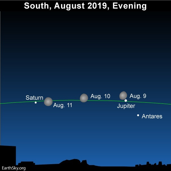 Multiple moon jupiter antares saturn august 2019 9 10 11