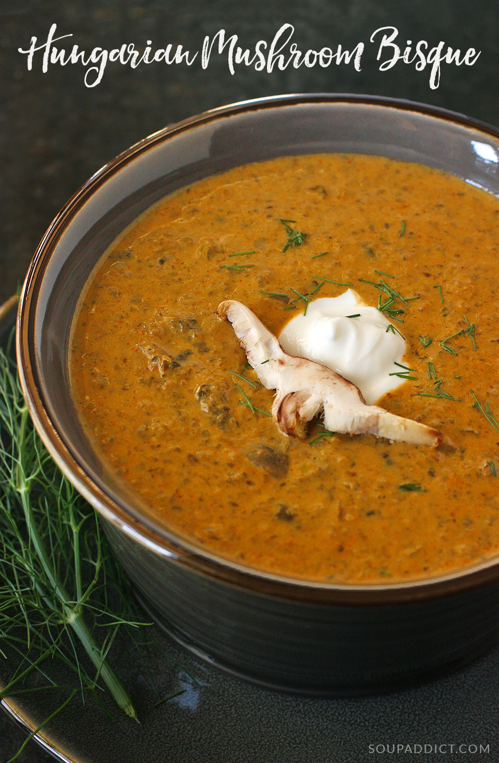 Hungarian Mushroom Soup pinnable image